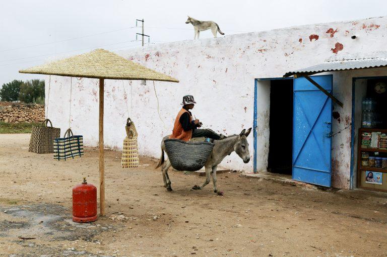 morocco boy donkey street photo travel photo tom ang